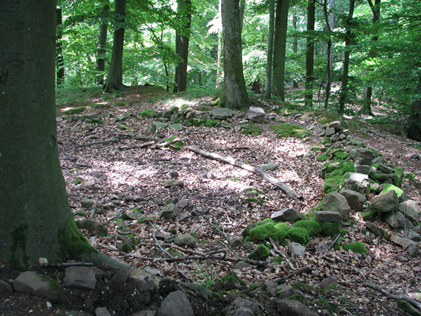 Dossenheim-Kronenburg2